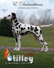 Download edition in PDF - E Dalmatians