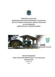 PPC_Administracao - Instituto Federal Sul-rio-grandense
