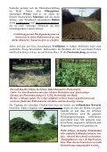 Wildäsungsmischungen für Hoch- und Niederwild - Seite 7