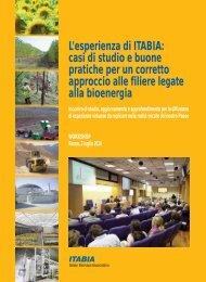 Atti workshop Itabia del 12 luglio 2010