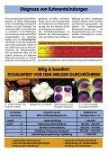 Broschüre - Braunvieh Tirol - Seite 3