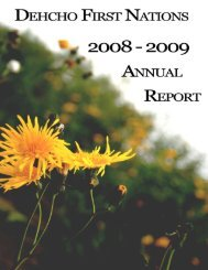 2008-09 Annual Report - Dehcho First Nations