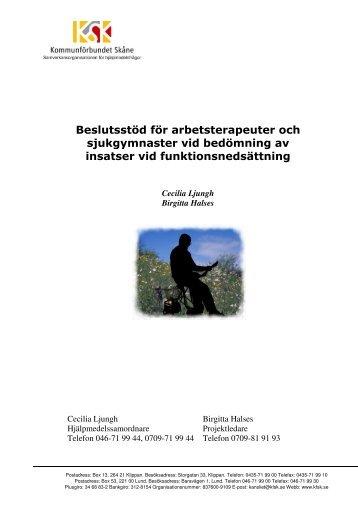 Beslutsstöd för bedömning vid funktionsnedsättning.pdf