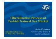 EMART Turkey 2013 - PETFORM