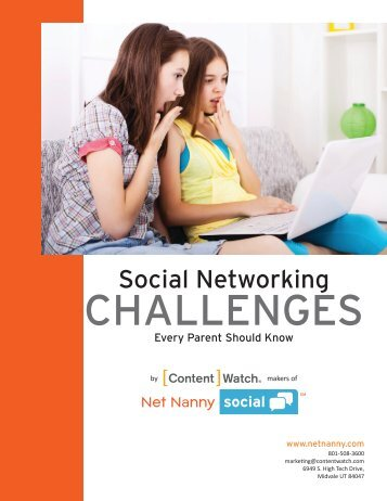 Social Network Theories, Findings and Challenges for ...