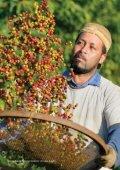 Fairtraderapporten_2015_webversion - Page 5
