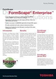 RZ Fly. FormScape GB - Toshiba