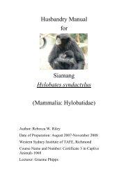 Husbandry Manual for Siamang Hylobates ... - Nswfmpa.org