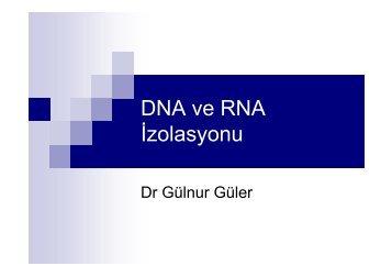 DNA ve RNA Ä°zolasyonu