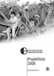 45 Projekte im Jahr 2008 - Solidarität Dritte Welt