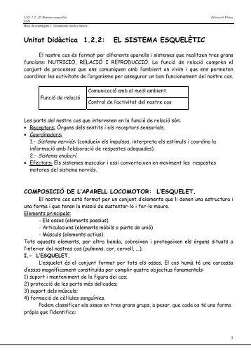 Unitat Didàctica 1.2.2: EL SISTEMA ESQUELÈTIC - Mallorca