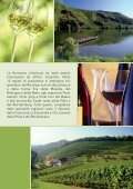 Lugano ospita i vini tedeschi - ceresiovini.ch - Page 2