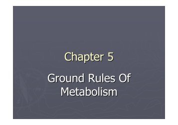 Chapter 5 Powerpoint (PDF)