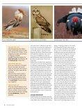 THE MUSHROOM RED LIST The mushroom Red ... - Wageningen UR - Page 7