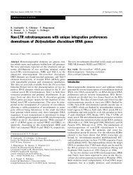 downstream of Dictyostelium discoideum tRNA genes - Genome ...