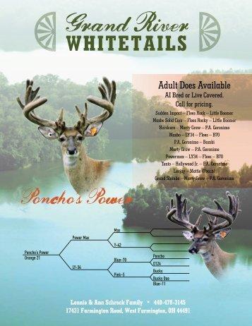 Poncho's Power - Whitetail Deer Farmer