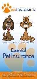 Pet Insurance - Blue Insurances