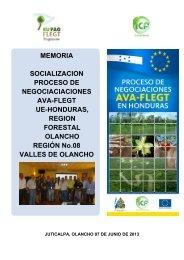 MEMORIA SOCIALIZACION PROCESO DE ... - ICF
