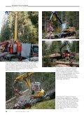 Mechanisierte Holzernte in Steil- und Gebirgslagen - WSL - Page 4