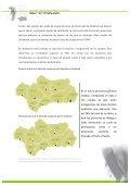 Estudio del Mercado y Valoración del Turismo de golf en Andalucía - Page 4
