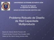 Problema Robusto de Diseño de Red Capacitada Multiproducto - pisis