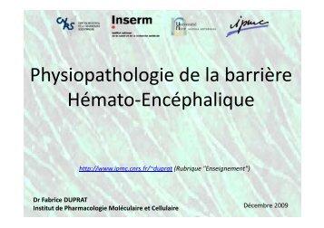 Physiopathologie de la barrière Hémato-Encéphalique - IPMC - CNRS