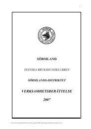 Verksamhetsberättelse 2007 - Svenska Brukshundklubben
