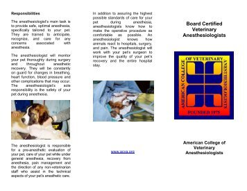 Information - ACVA Diplomate Anesthesia Brochure - Purdue ...