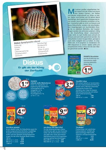 Steckbrief guppy erstausstattung zoo co for Aquaristik katalog
