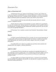 Penetration Test Text - Cybsec
