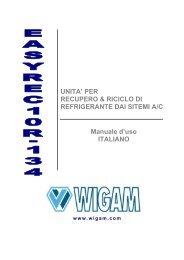 EasyRec10R-134 - Wigam