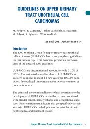 guidelines on upper urinary tract urothelial cell carcinomas