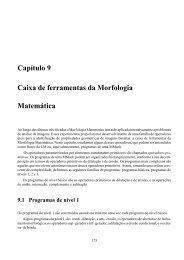 Capítulo 9 Caixa de ferramentas da Morfologia ... - banon-pc:1905