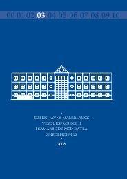 Tilsynsrapport 2008 - Københavns malerlaug