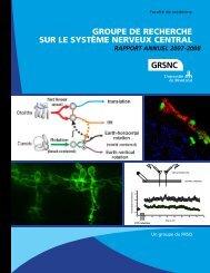 Rapport annuel complet - GRSNC - Université de Montréal