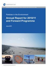 Annual Report for 2010/11 and Forward Programme - Sellafield Ltd