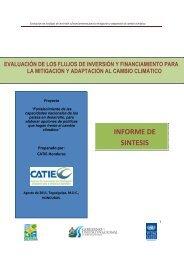 Español - UNDPCC.org