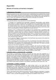 PDF(279 KB) - jifsan
