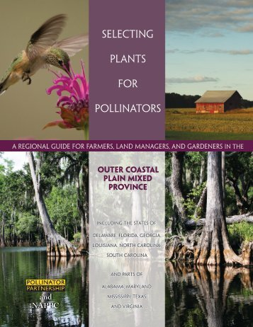Outer Coastal - Pollinator Partnership