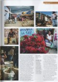 Traveller Magazine - The Mango Orchard - Page 4