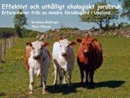 Effektivt och uthålligt jordbruk. Erfarenheter från mindre försöksgård