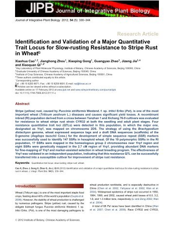 Identification and Validation of a Major Quantitative Trait Locus for ...