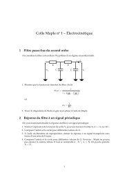 Colle Maple no 1 – Électrocinétique
