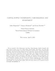 capital supply uncertainty, cash holdings, and investment
