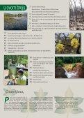 Šume Bornea - Hrvatske šume - Page 3