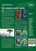 Šume Bornea - Hrvatske šume - Page 5