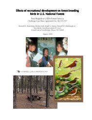 Low-res PDF - Cornell Lab of Ornithology - Cornell University