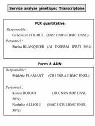 Service de puce à ADN par Karim BORDJI (en format .pdf)