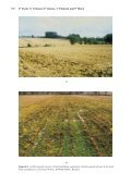 Variable Source Areas, Soil Moisture and Active Microwave ... - Page 6