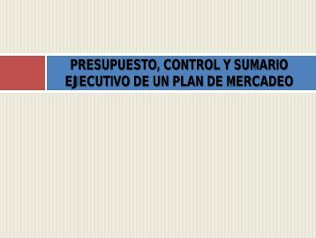 presupuesto de un plan de mercadeo - Aves.edu.co